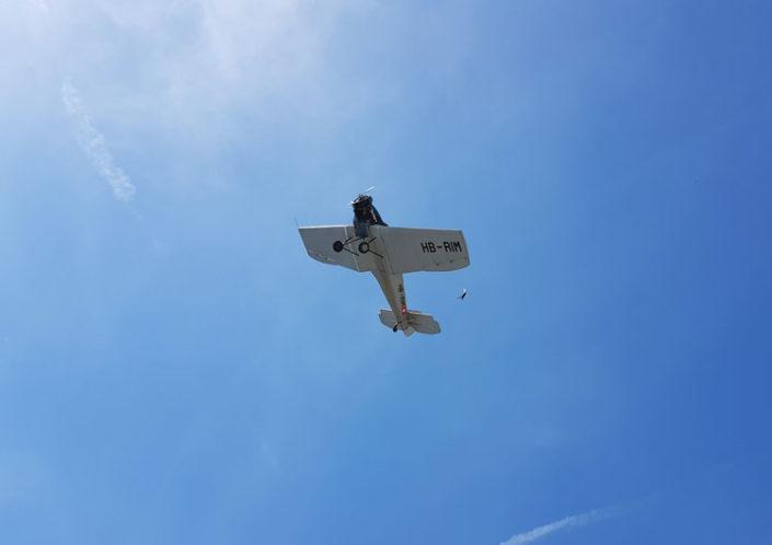 Junkers F 13 in Begleitung eines Vogels - 25.06.2019 Dessau