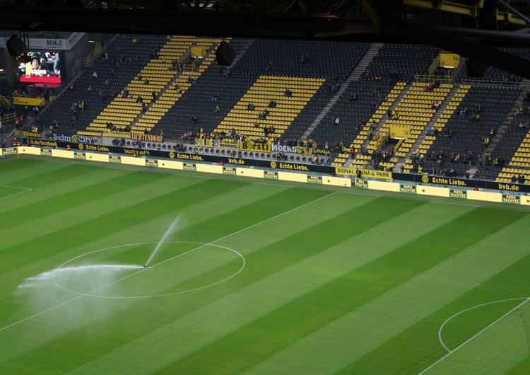 Kauri Spirit Fan Events BVB Dortmund
