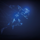 Kauri Spirit Transformation Sportmarketing 2021
